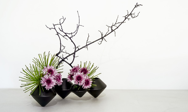 Workshop: Ikebana