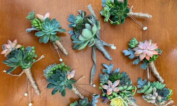 Workshop: Succulent Jewellery with Tracey Andriolo