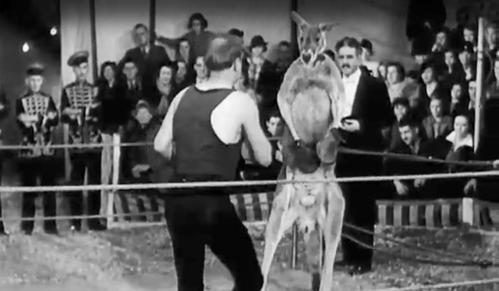 NFSA Friends - Lost Australia: Orphan of the Wilderness (1936)